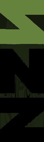 SNZ-logo FCgroen